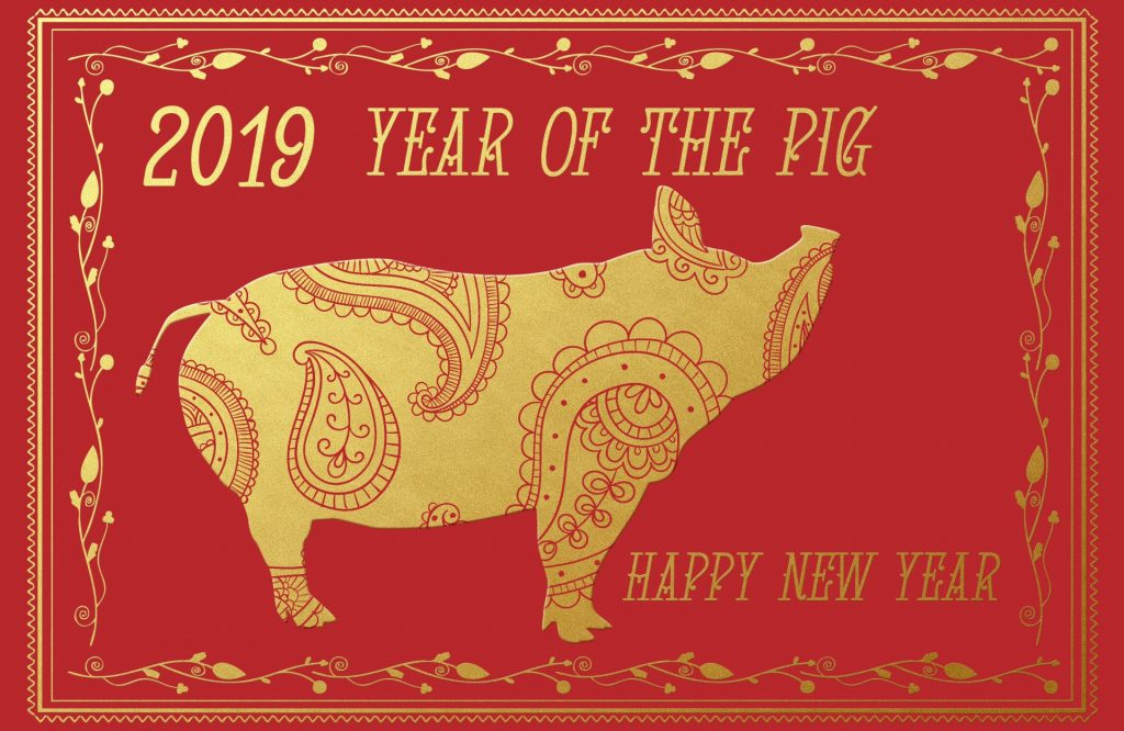 Year Of The Pig 2019. Public Domain Image.